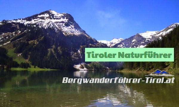 Tiroler Naturführer – Modul 3 (Wiese)